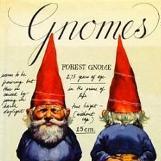 Gnome in Plaid