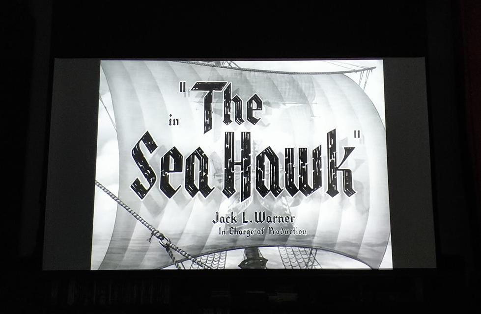 Sea Hawk.jpg